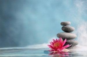 mindfulness-2-300x195
